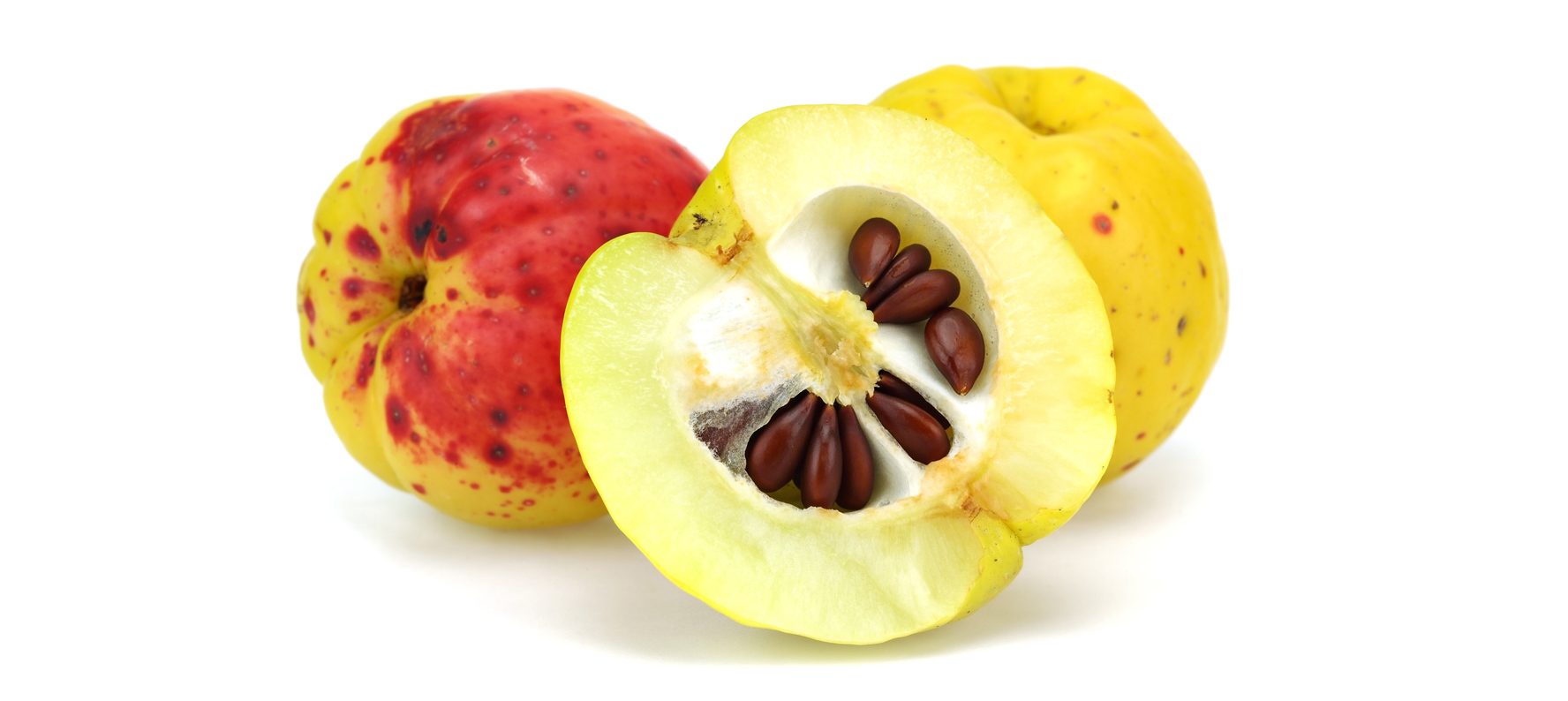 Apple seed oil is used in natural skin care products because it softens, protects, hydrates and nourishes the skin
